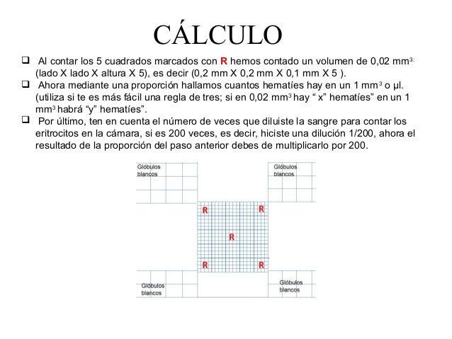 10bx exercise program pdf