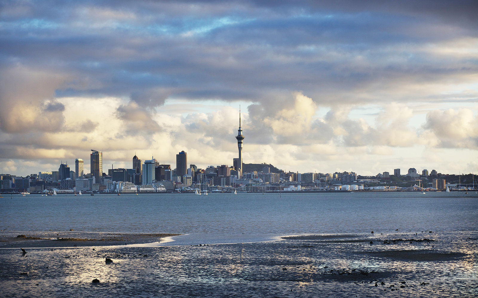 auckland art galleries guide search auckland