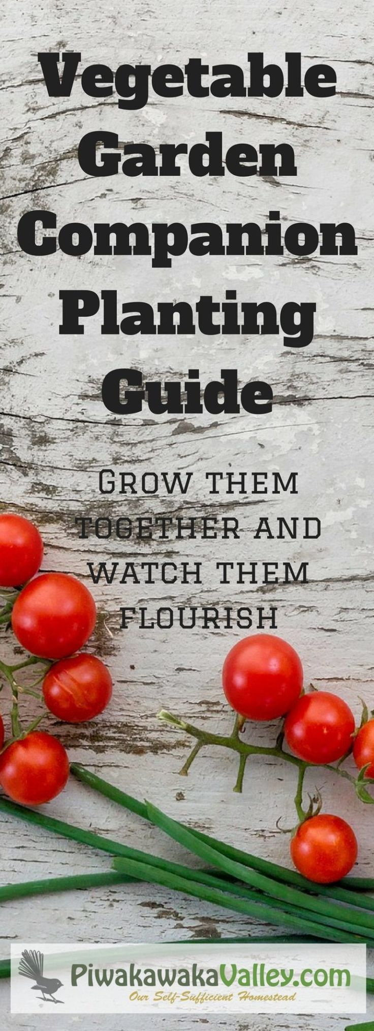 combination vegetable planting guide