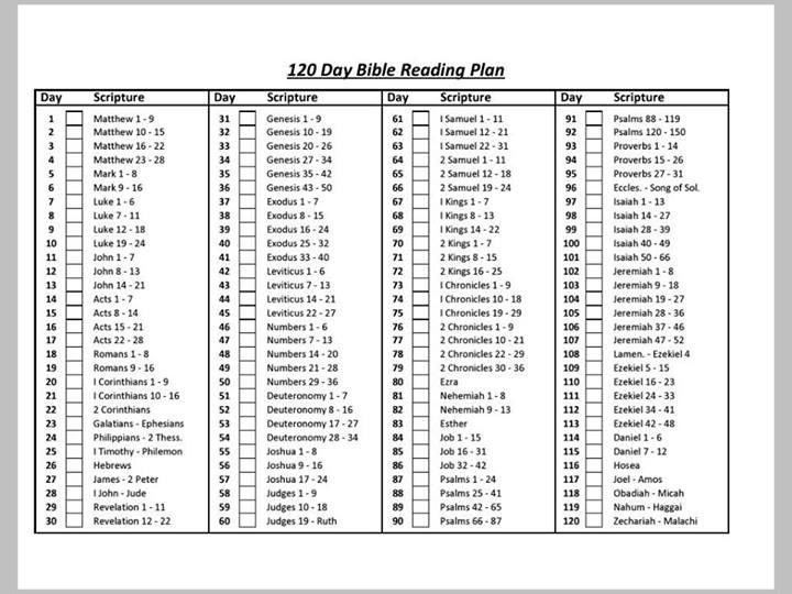 chronological bible reading plan pdf