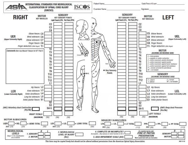 asia scale pdf