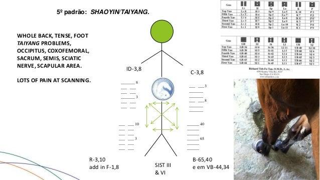 acupuncture 1 2 3 richard teh fu tan pdf