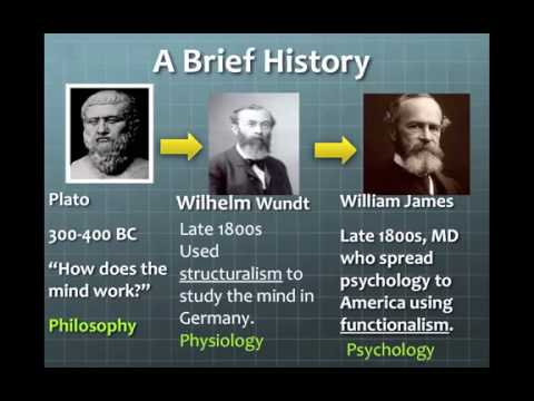 brief history of psychology pdf