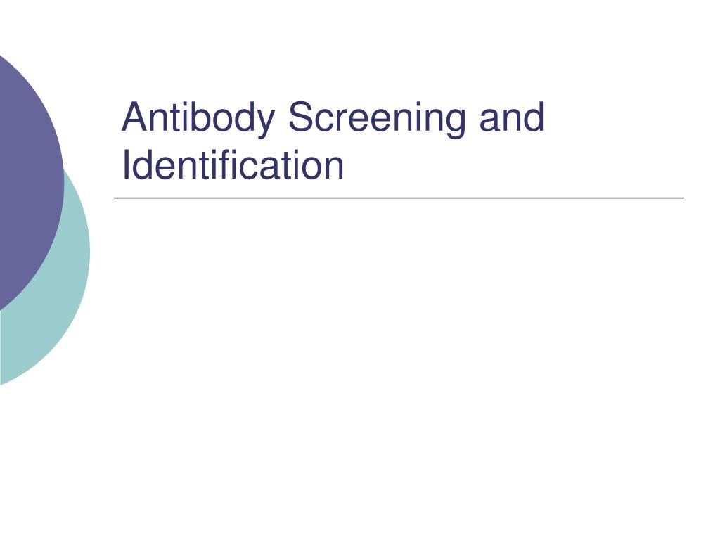 antibody screening and identification pdf