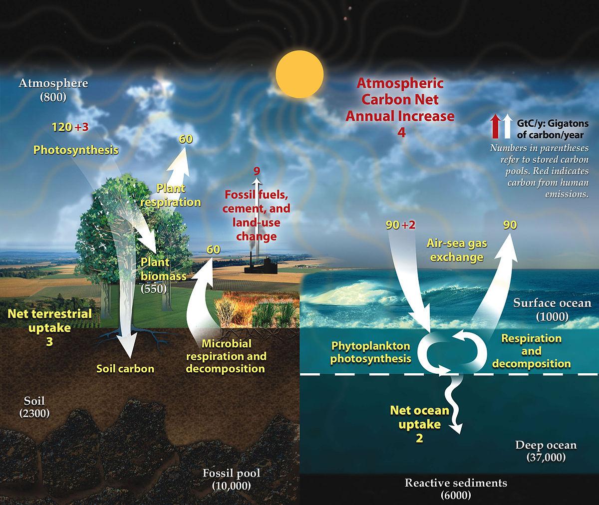 causes of global warming pdf